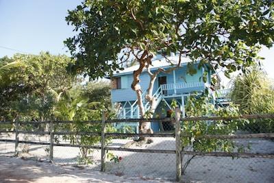 Welcome | Placencia Rentals Placencia Belize Rentals Beach